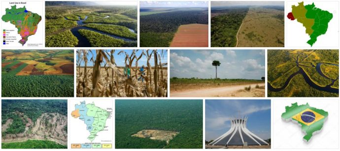 Land Structure in Brazil