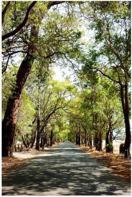 Pinjarra - surroundings